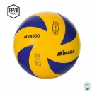 Ballons Club de Volley