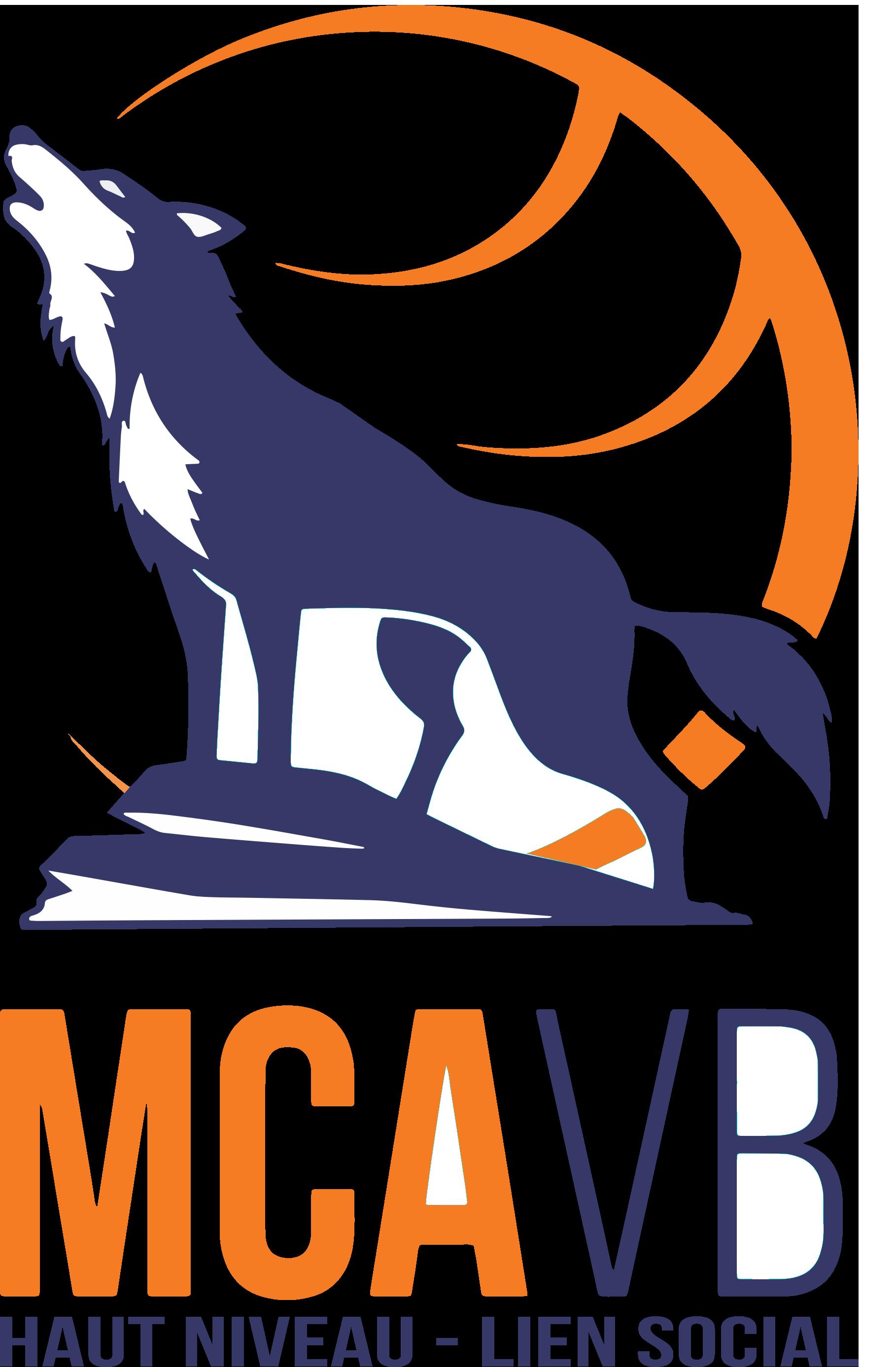 Equipement sportif personnalisé pour le club de volley du mcavb